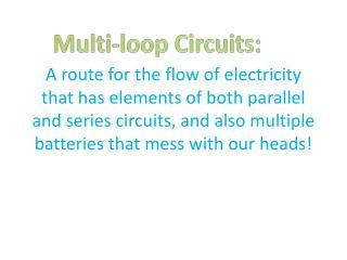 Multi-loop Circuits: