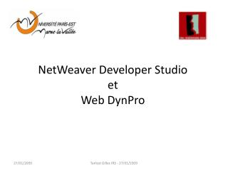 NetWeaver Developer Studio  et Web DynPro