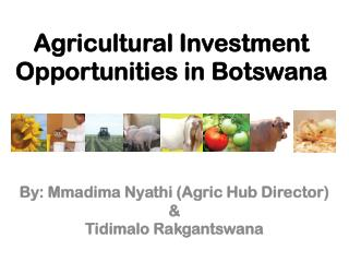 Agricultural Investment Opportunities in Botswana