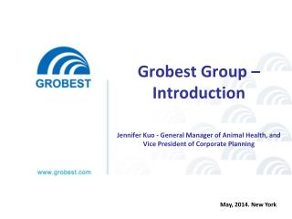Grobest Group – Introduction