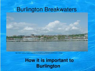 Burlington Breakwaters