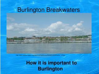 Burlington Breakwaters