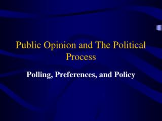 Public Opinion and The Political Process