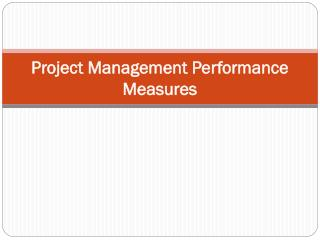 Project Management Performance Measures