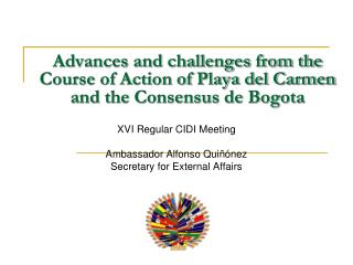 Advances and challenges from the Course of Action of Playa del Carmen and the Consensus de Bogota