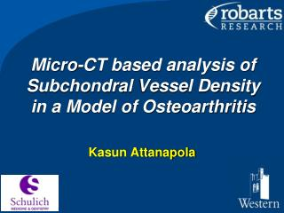 Micro-CT based analysis of  Subchondral  Vessel Density in a Model of Osteoarthritis