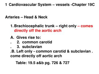 Cardiovascular System – vessels -Chapter 19C