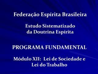 PROGRAMA FUNDAMENTAL Módulo XII:  Lei de Sociedade e    Lei do Trabalho