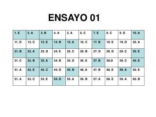 ENSAYO 01