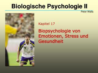 Kapitel 17 Biopsychologie von Emotionen, Stress und Gesundheit