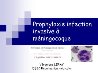 Prophylaxie infection invasive à méningocoque