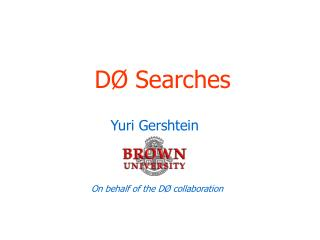 DØ Searches