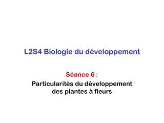 L2S4 Biologie du développement
