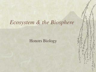 Ecosystem & the Biosphere