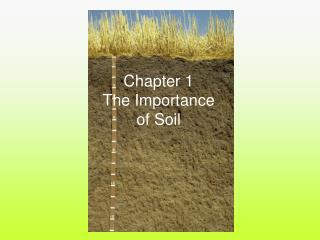 Chapter 1 The Importance of Soil