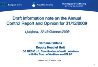 Draft information note on the Annual Control Report and Opinion for 31