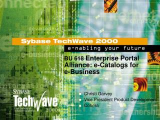 BU 618  Enterprise Portal Alliance: e-Catalogs for e-Business