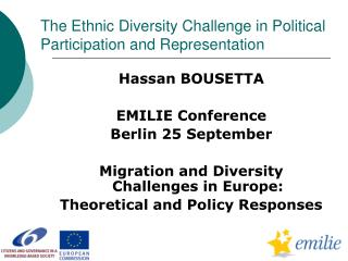 The Ethnic Diversity Challenge in Political Participation and Representation