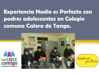Experiencia  Nadie es Perfecto  con padres adolescentes en Colegio comuna Calera de Tango.