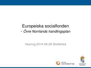 Europeiska socialfonden -  Övre Norrlands handlingsplan