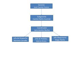 Gerente Juan Camilo Forero