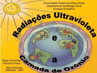 Universidade Federal de Minas Gerais Departamento de Biologia Geral Ecologia Energética