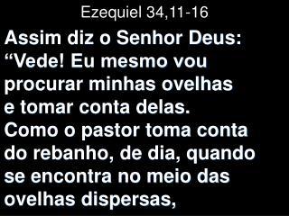 Ezequiel 34,11-16