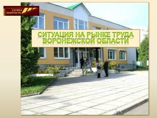 Ситуация на рынке труда Воронежской области