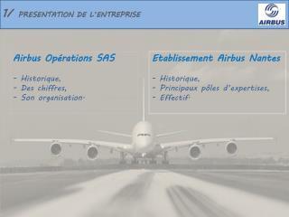 1/  PRESENTATION DE L'ENTREPRISE