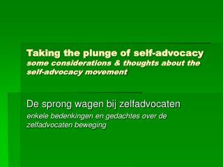 De sprong wagen bij zelfadvocaten enkele bedenkingen en gedachtes over de zelfadvocaten beweging
