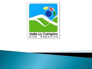 Estadísticas  XII  Fecha Clausura 2011