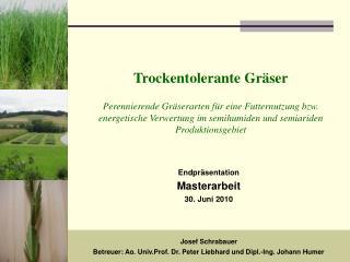 Josef Schrabauer  Betreuer: Ao. Univ.Prof. Dr. Peter Liebhard und Dipl.-Ing. Johann Humer