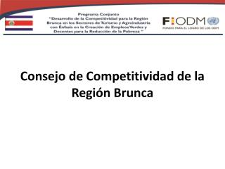 Consejo de Competitividad de la Región  Brunca