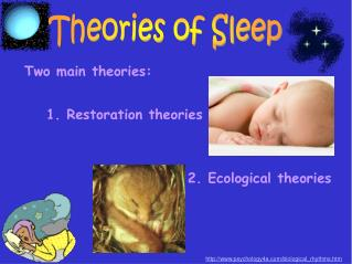 Theories of Sleep