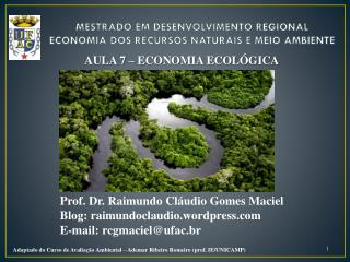MESTRADO EM DESENVOLVIMENTO REGIONAL ECONOMIA DOS RECURSOS NATURAIS E MEIO AMBIENTE