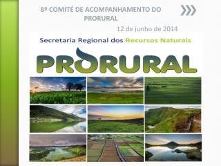 8º COMITÉ DE ACOMPANHAMENTO DO PRORURAL 12 de junho de  2014