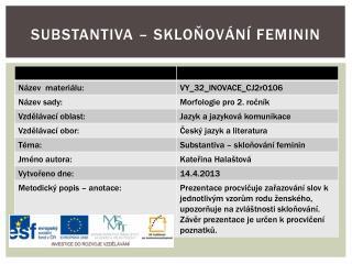 Substantiva – skloňování feminin