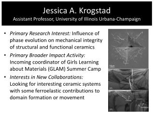 Jessica A.  Krogstad Assistant Professor, University of Illinois Urbana-Champaign