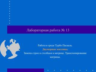 Лабораторная работа № 13