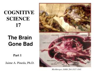 COGNITIVE   SCIENCE          17     The Brain    Gone Bad              Part 1    Jaime A. Pineda, Ph.D.