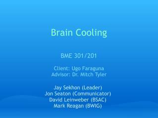 Brain Cooling