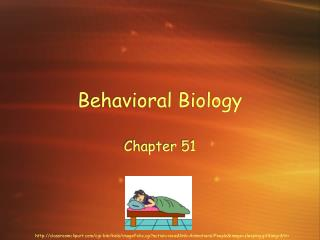 Behavioral Biology