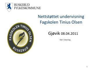 Nettstøttet undervisning Fagskolen Tinius Olsen            Gjøvik  08.04.2011 Ole F. Stevning