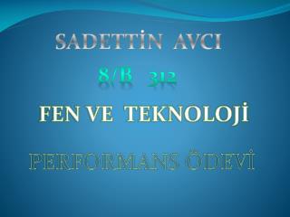 SADETTİN  AVCI