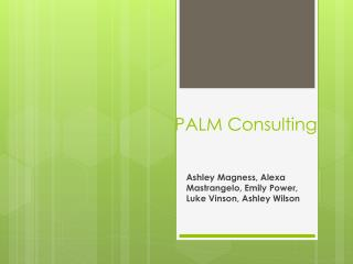 PALM Consulting