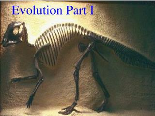 Evolution Part I