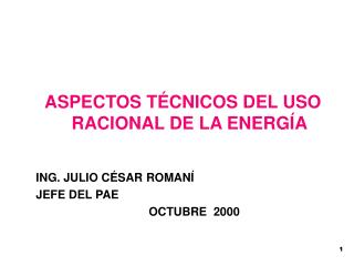 ASPECTOS TÉCNICOS DEL USO RACIONAL DE LA ENERGÍA ING. JULIO CÉSAR ROMANÍ JEFE DEL PAE