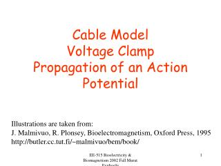 Cable Model Voltage Clamp Propagation of an Action Potential