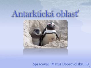 Antarktická oblasť