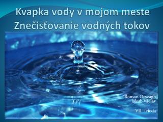 Kvapka vody v mojom meste Znečisťovanie vodných tokov